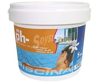Pqs Minorador de pH granulado, 5 kg