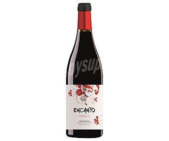Encanto Vino tinto con denominación de origen Bierzo Botella de 75 cl