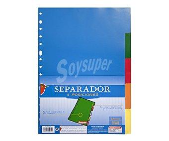 Auchan Bolsa de 10 separadores de polipropileno, multitaladro, con margenes de clasificación que permiten la escritura y de 5 colores diferentes 1 unidad