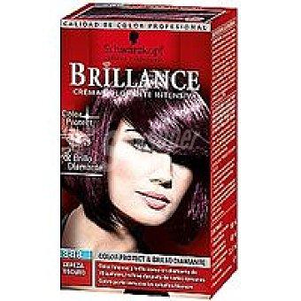 N.888 Brillance Tinte cereza oscuro Caja 1 unid