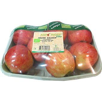 Manzana evelina ecológica peso aproximado bandeja 1 kg