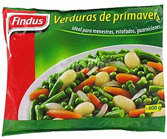 Findus Verdura de primavera Bolsa 600 g