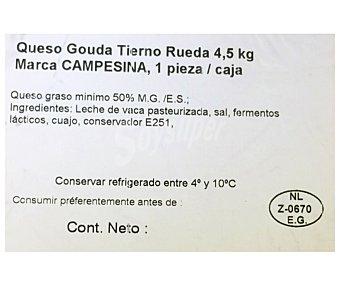 Macasa Queso gouda tierno 300 gramos aproximados