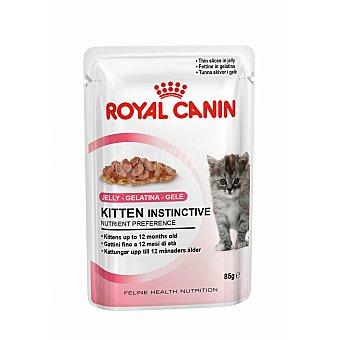 Royal Canin Alimento húmedo en gelatina para gatitos hasta 12 meses Envase 85 g