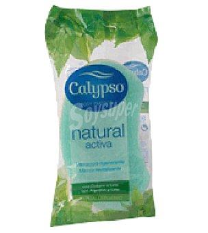 Calypso Esponja activa 1/6 1 ud