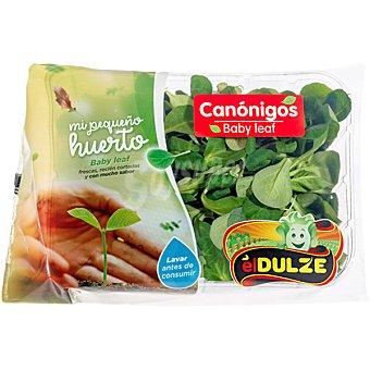 Dulze Canónigos Tarrina 100 g