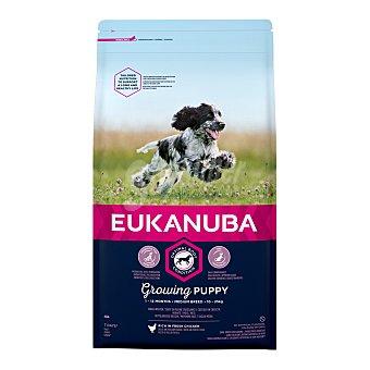 Eukanuba Pienso para perros medianos cachorros Medium Puppy Pollo 12 Kg