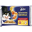 Gato Sensaciones buey y pollo 4 x 100 g Purina Felix