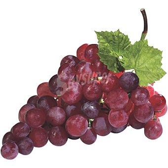 Uvas negras sin semilla al peso