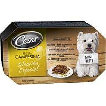 Cesar Carne Pack 4x150 g