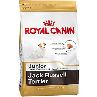 Royal Canin alimento completo especial para cachorros hasta los 10 meses de edad Jack Russell Terrier Junior  bolsa 1,5 kg