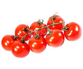 Ibereco Tomate Rama Ecologico 500g