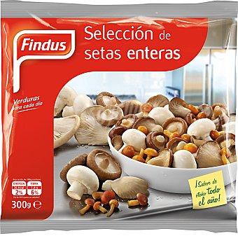 Findus Selección de setas enteras 300 g