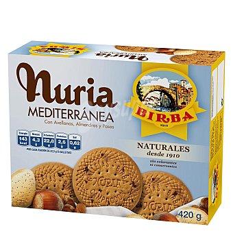 Nuria Galletas artesanas con frutos secos 420 gr