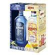 Ginebra Larios + Ginebra 12 premium pack 2x70 cl Pack 2 x 70 cl Larios