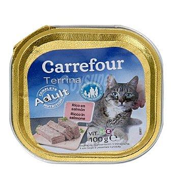 Carrefour Delicias para gatos de salmón 100 gr