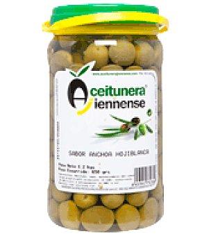 Aceitunera Jiennense Aceituna sabor anchoa Hojiblanca 650 g