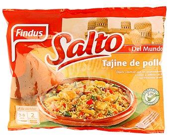 SALTO de FINDUS Tajine de pollo 350 gramos