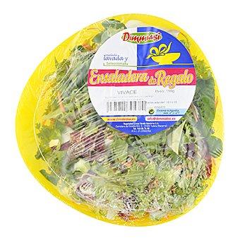 Ensalada Vivace Envase de 190 g
