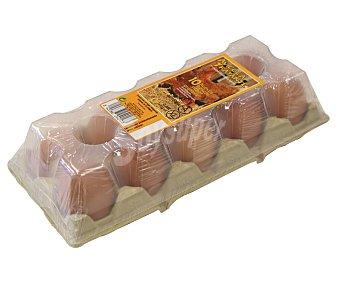AVÍCOLA TRATANTE Huevos frescos de categoria A y clase XL 10 uds