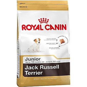 Royal Canin alimento completo especial para cachorros hasta los 10 meses de edad Jack Russell Terrier Junior bolsa 500 g