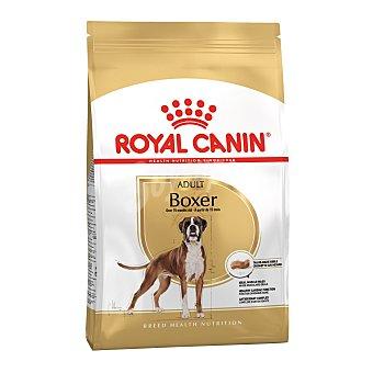 Royal Canin Boxer adult pienso para perros adultos a partir de 15 meses raza Boxer Bolsa 12 kg