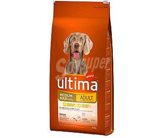 Ultima Affinity Comida para Perros Adultos Ultima con Pollo y Arroz 15 kg
