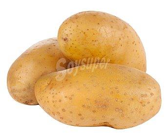 Patatas saco hortaliza 15 kg