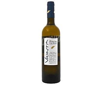 Vionta Vino blanco Albariño D.O. Rías Baixas Botella de 75 cl