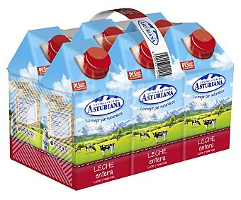 Central Lechera Asturiana Leche Entera Pack 6 Brik 0,5 l