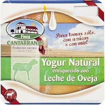 Cantarranas Yogur natural azucarado Pack 4x125 g