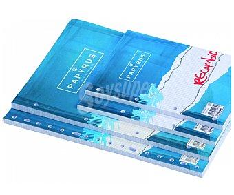 PAPYRUS Lote de 4 recambios, 2 de tamaño folio y 2 de tamaño A6, con cuadrícula de 6x4 milímetros, margen izquierdo, 4 taladros y 80 hojas de 8 gramos 1 unidad