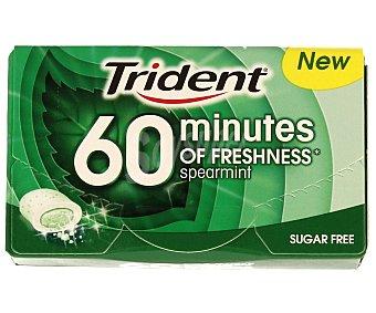 Trident Chicle 60 minutos hierbabuena 20 g