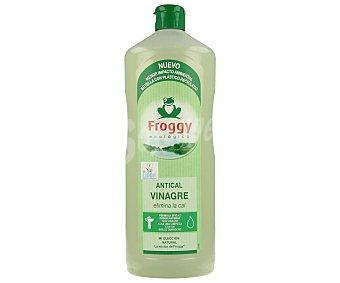 Froggy Antical vinagre (fórmula eficaz poder natural con vinagre para una limpieza con un brillo duradero) 1 litro
