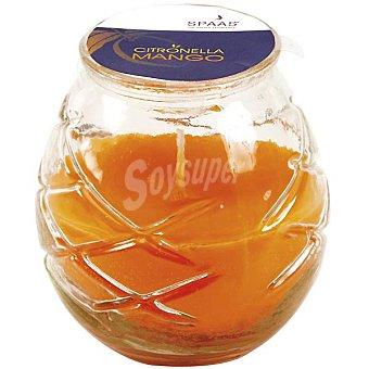 SPAAS Vela exterior de citronella en vaso de cristal color naranja