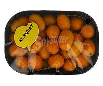 FRUTA Kumquat bandeja 300 gramos
