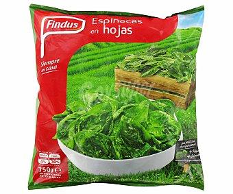 Findus Espinacas en hojas miniporciones bolsa 750 g