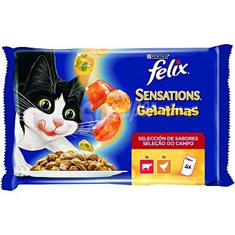 Purina Felix Comida húmeda para gatos Felix Sensations Carnes en gelatina 1200 gr