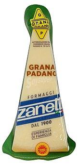 Zanetti Queso parmesano grana padano Paquete 270 g peso aprox.