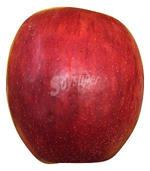 Manzana roja (venta por unidades) Unidad 200 g