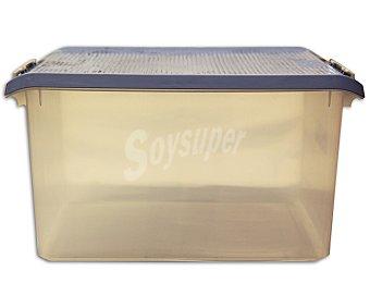 Tatay Caja de ordenación multiúsos con tapa, capacidad de 35 litros, fabricada en plástico color azul 1 Unidad