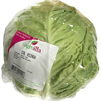 Agroilla Col rizada pieza peso aproximado 1 kg