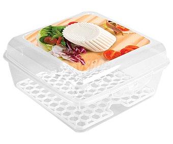 A FUEGO LENTO Recipiente hermético fabricado en plástico para queso fresco, 14x14x7,5 cm 1 unidad