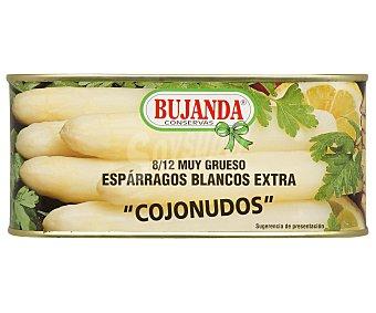 Bujanda Espárragos Extra 9/12 Piezas 425 Gramos