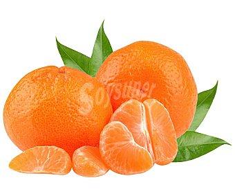 Mandarina ecológica Bandeja 650 g