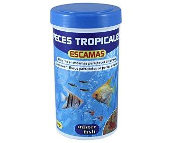 MISTER FISH Alimento en escamas para peces tropicales 50 gramos