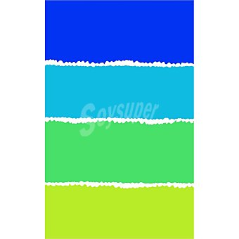 CASACTUAL Lucia Toalla de playa con 4 franjas verdes y azules