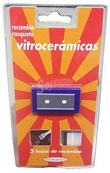 Eurosyleva Rasqueta vitroceramica recambio Paquete de 5 unidades