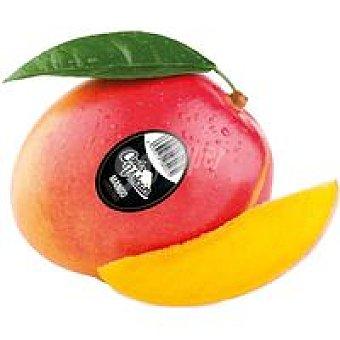 COSTA VOLCÁN Mango Excellence 500 g