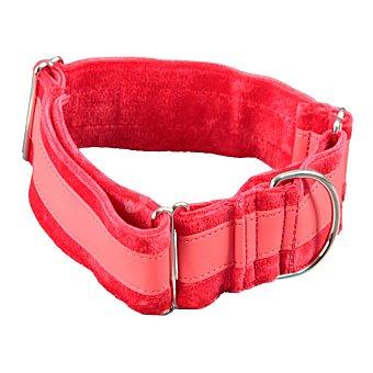 Arppe Collar para perros modelo Galgo Ascott medidas 5 cm regulable medidas 32-49 cm 1 unidad